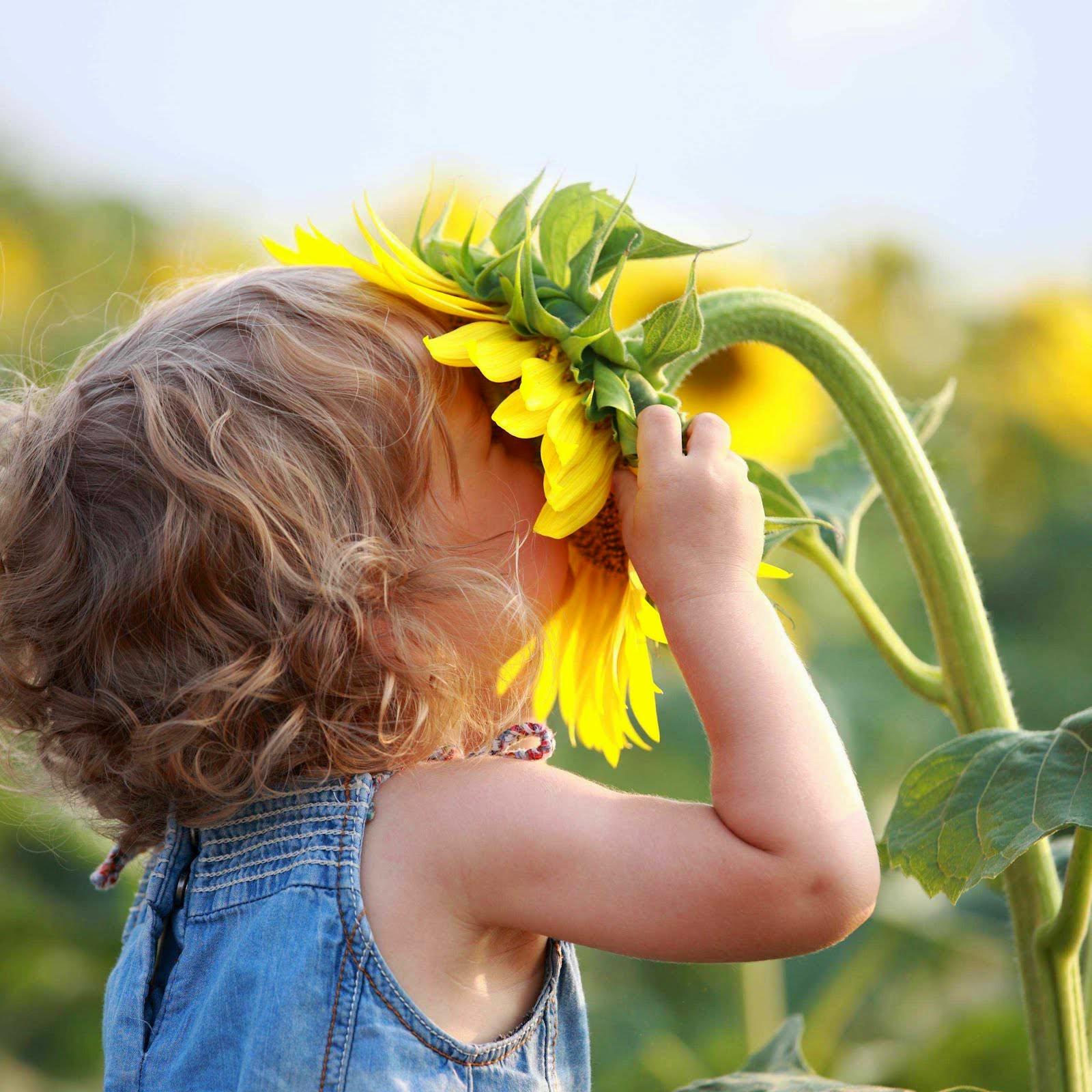Как создать позитивный настрой на день и на жизнь