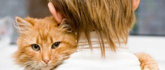 Почему ребенок мучает животных