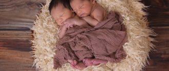 Как воспитывать двойняшек