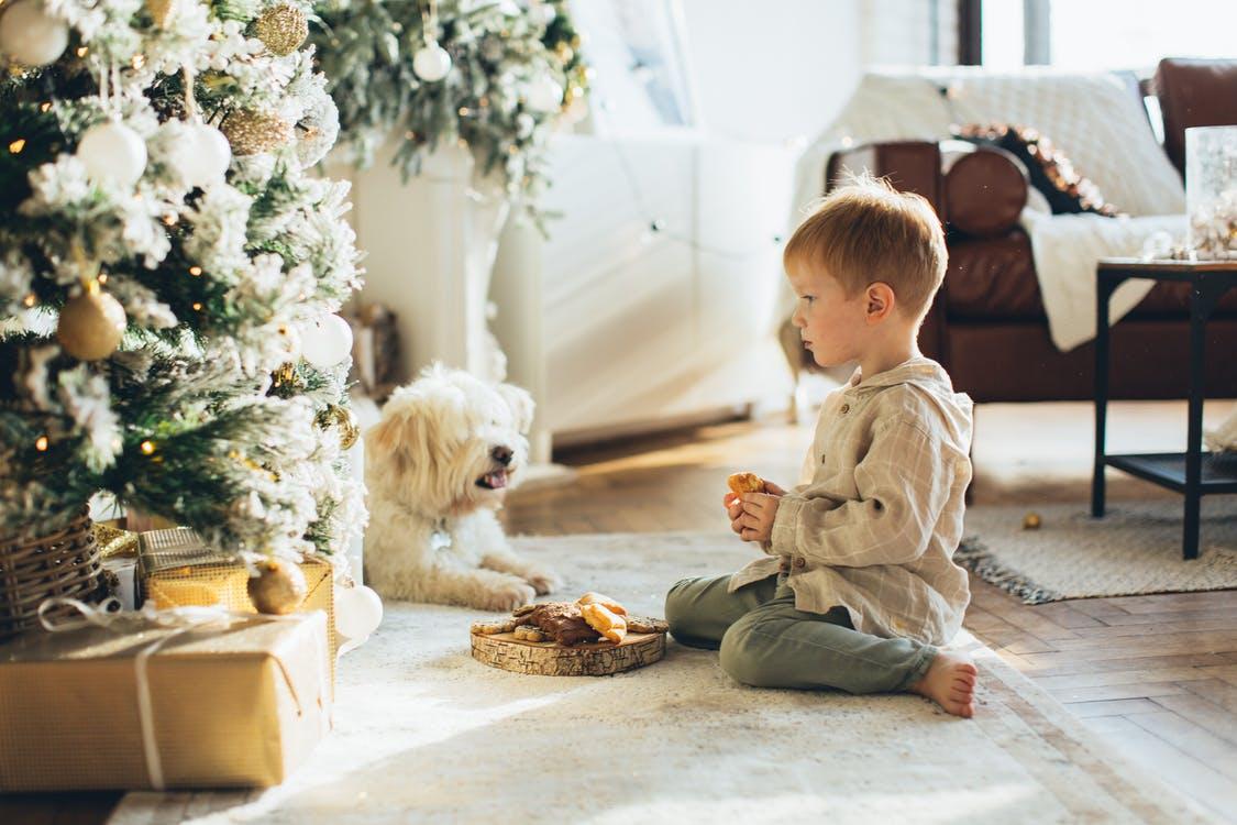 Как научить ребенка заботиться о животных