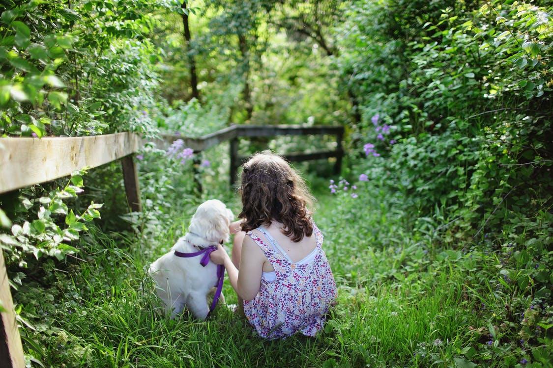 Какие правила общения с животными нужно привить ребенку